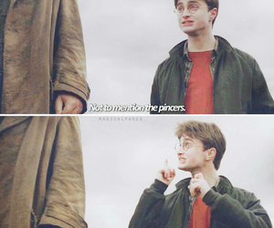 harry and potter image