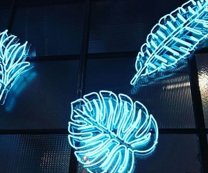 neon, blue, and leaves image