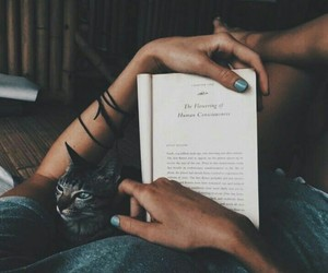 atmosphere, book, and calm image