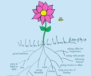islam, blessed, and allah image