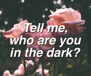 in the dark, Lyrics, and camila cabello image