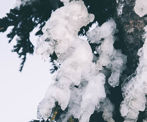 ice, nature, and mountain image