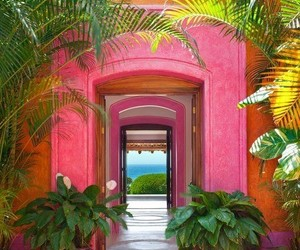 pink, mexico, and summer image