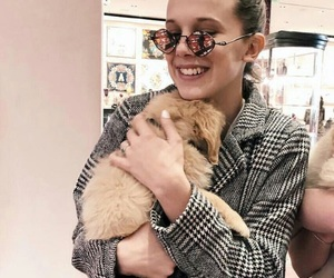dog, stranger things, and millie bobby brown image