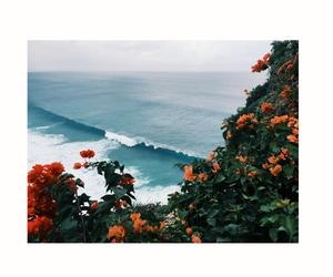 adventure, explore, and paradise image
