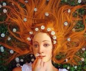 sandro botticelli, Venus, and arte gracioso image