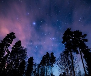 landscape, nature, and night image