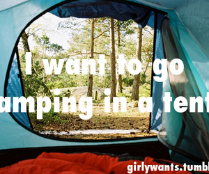 camping, forest, and holiday image