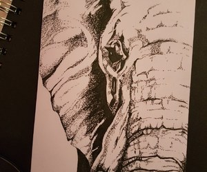 drawing, elephant, and ink image