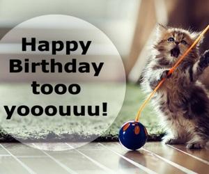 happy birthday and birthday wishes image
