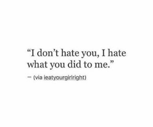 quotes, hate, and did image