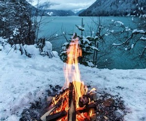 fire, forest, and snow image