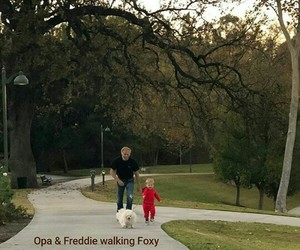 baby, grandpa, and walking image
