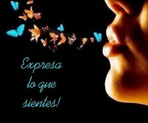 butterfly, frases, and textos image