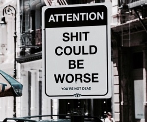 quotes, sign, and shit image