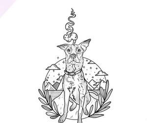 animal, blanco, and dibujo image
