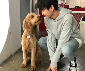 dog, ulzzang, and cute image