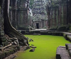Cambodia, Temple, and ta prohm temple image
