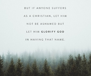 bible, jesus christ, and jesus saves image