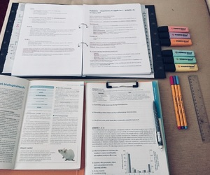 biology, notes, and school image