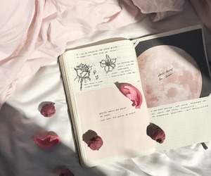 aesthetic, pink, and book image