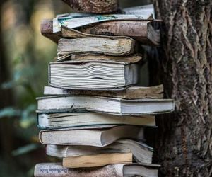 aesthetic, forest, and books image