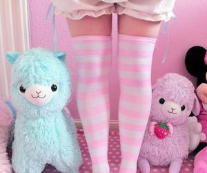 alpaca, fashion, and socks image