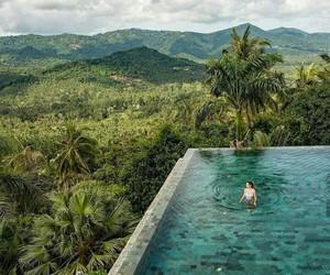 vida, lujos, and selva image