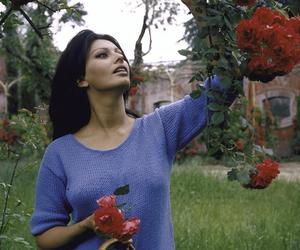 sophia loren, vintage, and flowers image