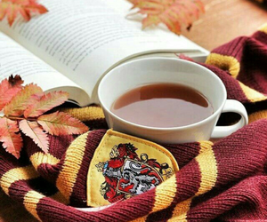 autumn, book, and harry potter image