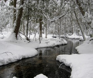 explore, nature, and snow image
