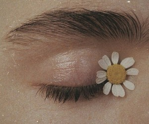 flowers, eye, and aesthetic image