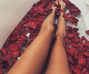 rose, legs, and red image