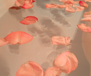aesthetic, bath, and petals image