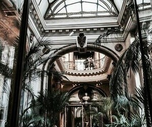 interior, architecture, and plants image