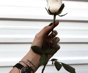 rose, tattoo, and white image