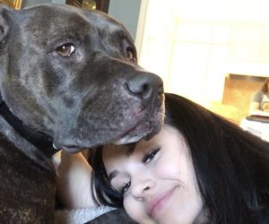 maggie lindemann, girl, and dog image