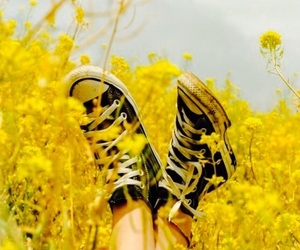 black converse, flowers, and yellow image