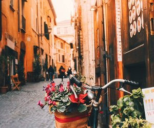 city, orange, and roma image