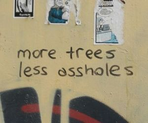 quotes, tree, and grunge image