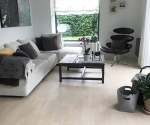 Blanc, gris, and living room image