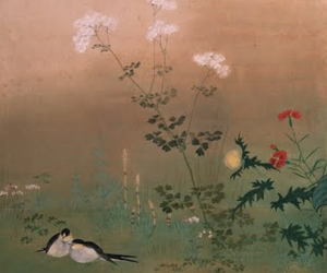 art, birds, and feed image