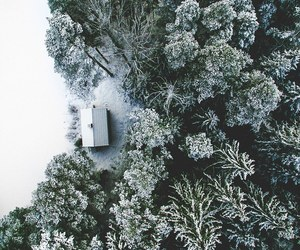 photography, nature, and snow image