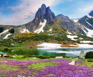 bulgaria, mountains, and europe image