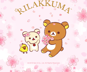 bear, bird, and cherry blossoms image