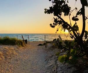 beach, Miami, and sun image