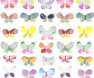 background, butterfly, and wallpapers image