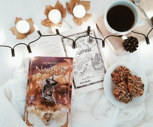 books and the chronicles of narnia image