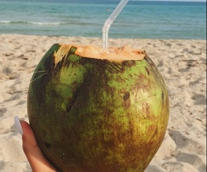 beach, classy, and coconut image