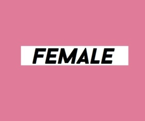 female, layout, and pink image
